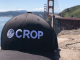CROP dispensary applications