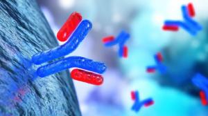 ImmunoPrecise Antibodies