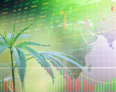 cannabis stocks